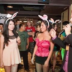 4.24 PAEZ Bunny Ladies Night